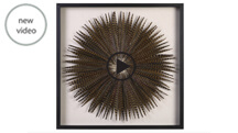 Feather Burst Shadow Box R04076.jpg